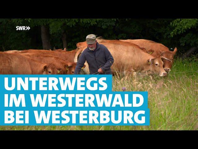 Einfach kann jeder – Der Westerwald rund um Westerburg