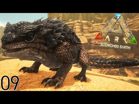 JE CAPTURE LE THORNY DRAGON ! | ARK: Scorched Earth ! #Ep9