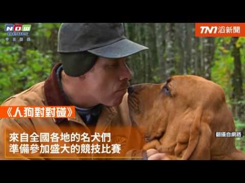 今日新聞/TOP5最佳寵物電影 喜歡狗狗的你絕不能錯過