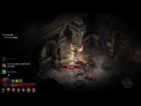 Diablo3RoS(UEE) ペットぶっちゃ~取りに行くだけ 1080p