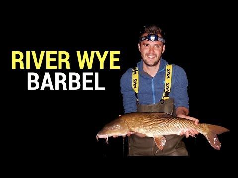 Fishing Brothers - River Wye Barbel