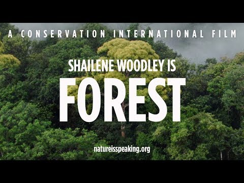 Nature Is Speaking: Shailene Woodley is Forest - YouTube