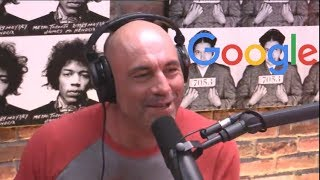 Joe Rogan on the Google Memo Controversy