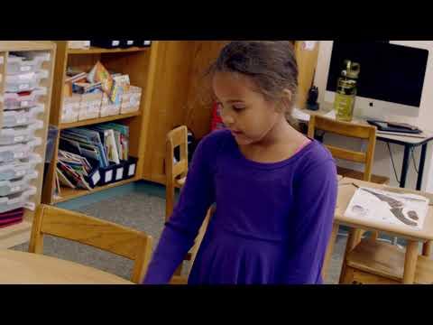The Elementary Program - Gladwyne Montessori