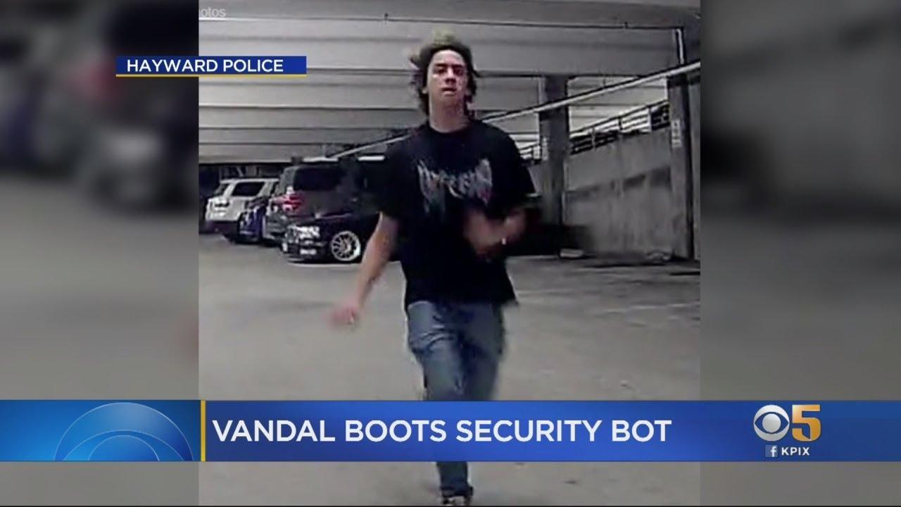 HAYWARD ROBOT ATTACK: Robotic Rent-A-Cop At Hayward Mall Videotapes Attack  By Vandal
