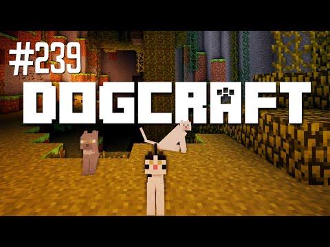 OCELOT HQ - DOGCRAFT (EP.239)