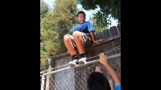 Funny Jumping Fence Fail!!