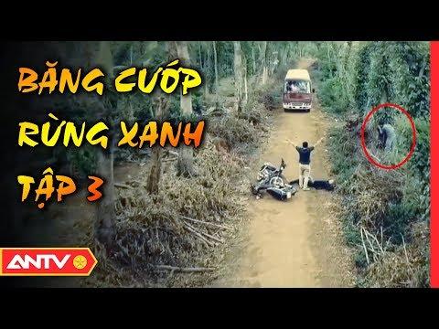 Băng Cướp Rừng Xanh Sa Lưới - Tập 3 | Hồ Sơ Vụ Án 2019 | ANTV