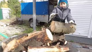 Echo cs 360 tes обзор походная пила и заготовка дров