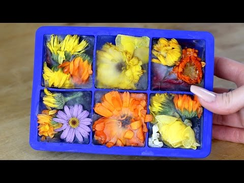 How to make clear flower ice cubes (tutorial)