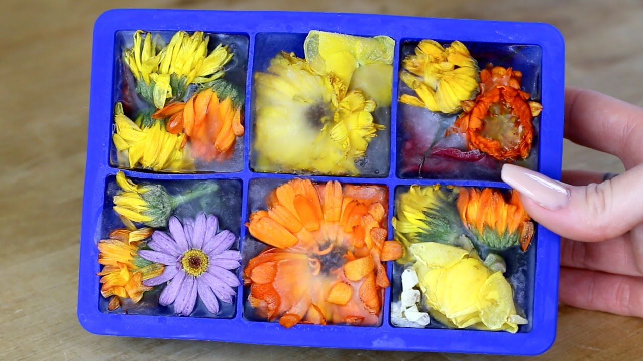 Image result for Great Tricks to Use Ice Molds Frozen flowers