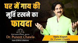 What are the Vastu Benefits of Kamdhenu Cow ? Vastu Remedy for Desire of Success, Kamdhenu Cow