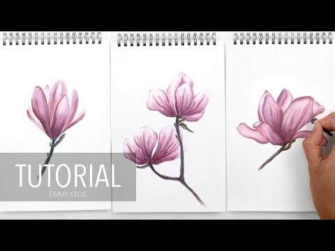 How to draw Flowers with Panpastel and Colored pencils