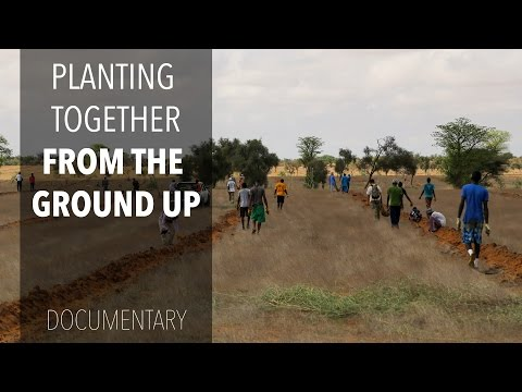 Planting Together: From the Ground UP