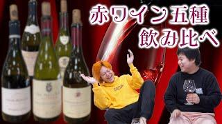 【大人ごっこ】おい!高級赤ワインの味、俺らにわかんのかい!!!!ききワイン会!!!!!【泥酔ギリ無し】