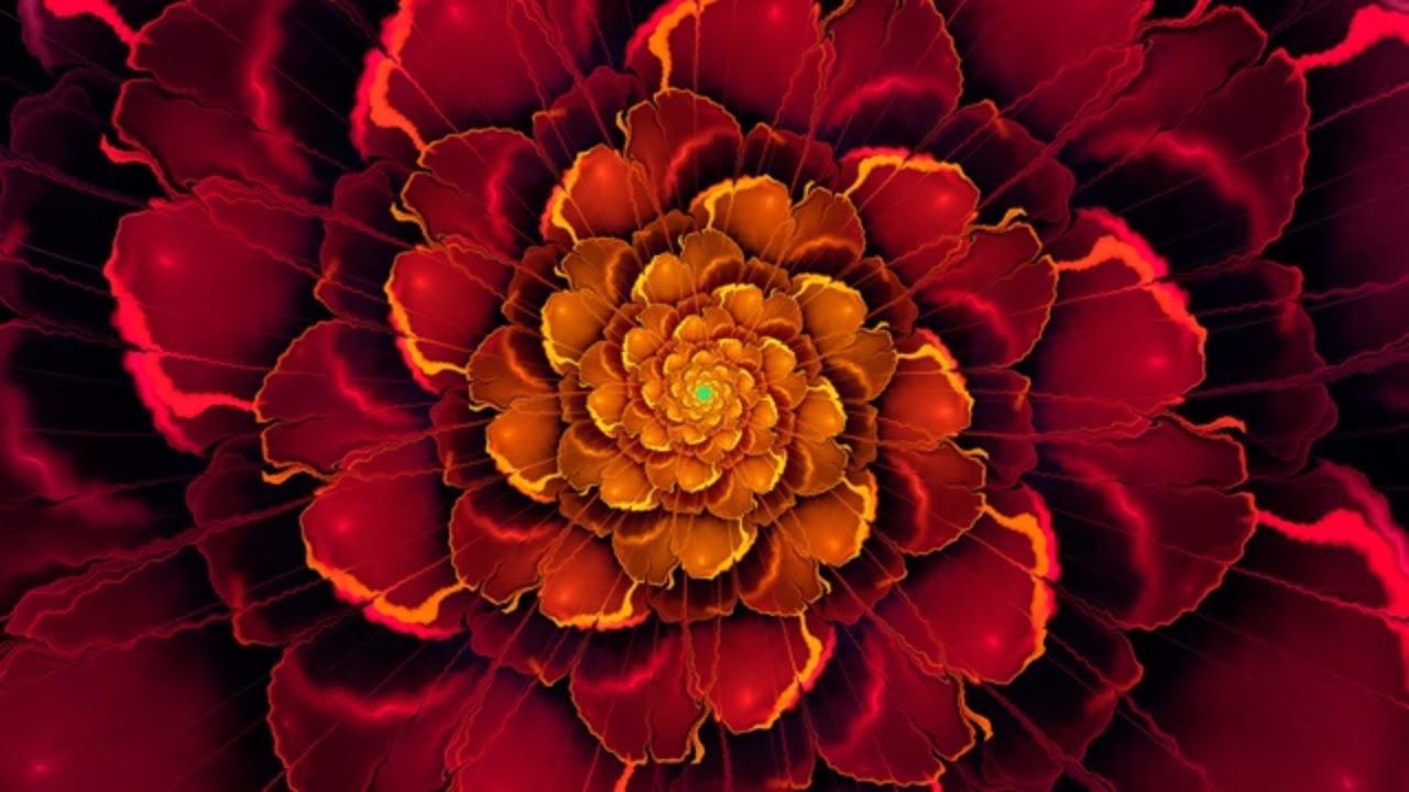 Chakra Meditation Music Root Chakra Balancing Healing Meditation