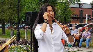 Wuauquikuna & Cristofer C Cordova  Ciechocinek  2019 -  Armonia Song