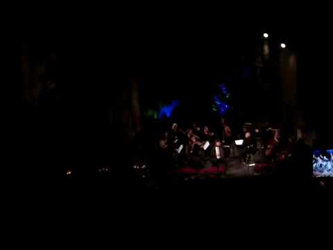 Vytenis Danielius ir Šv. Kristoforo orkestras - Opale concerto 3 movements(R. Galliano)