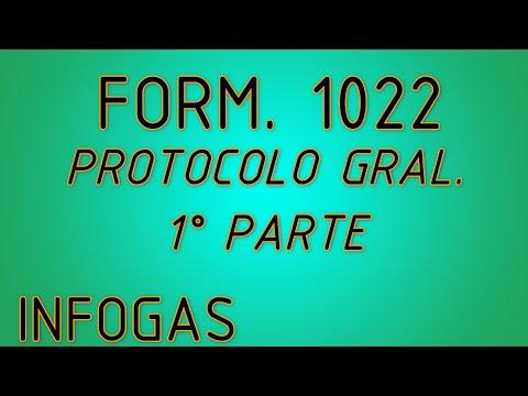 FORMULARIO 1022 - PROTOCOLO COMPLETO 1°PARTE - UN TRABAJO BIEN HECHO  Y GRÁFICOS 3D  EXCLUSIVOS.