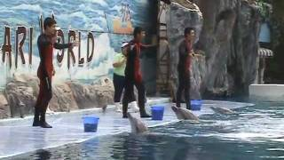 New Dolphin Show SAFARI WORLD BANGKOK THAILAND