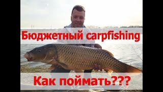 Рыбалка Одесская обл Аква Сити 2020 Ловля карпов на китайское снаряжение