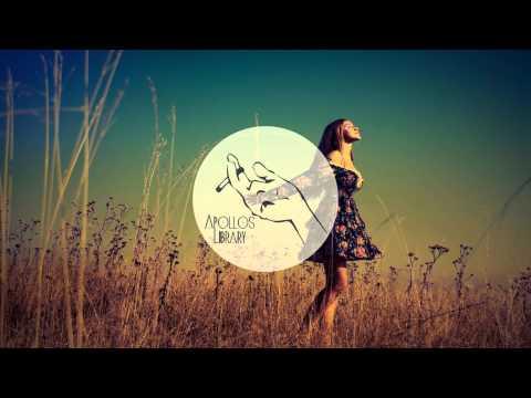 Flume - Insane feat. Moon Holiday (L D R U Remix)