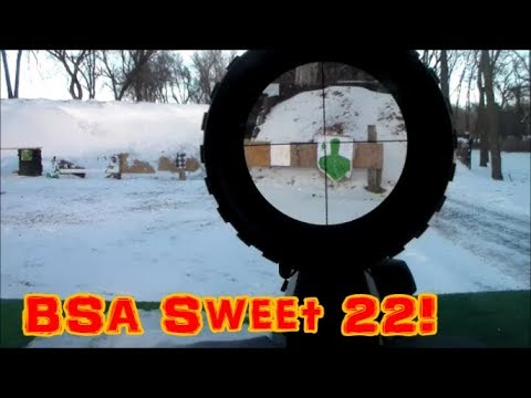 BSA 580 3-9X40 Sweet 22 Rifle Scope Side Parallax Adjustment,Multi-Grain Turret
