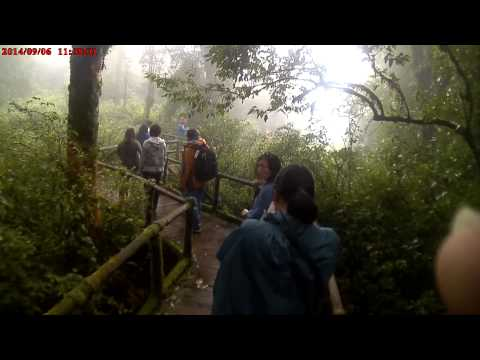 1 day trip chiang mai Doi Inthanon National Park Part # 2
