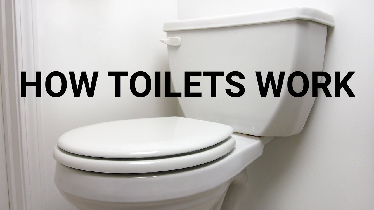 an analysis of the history of the flush toilet and its inner workings One-piece toilets the inner workings of a one-piece toilet, such as the pipe elements and tanks and how thoroughly does it flush.