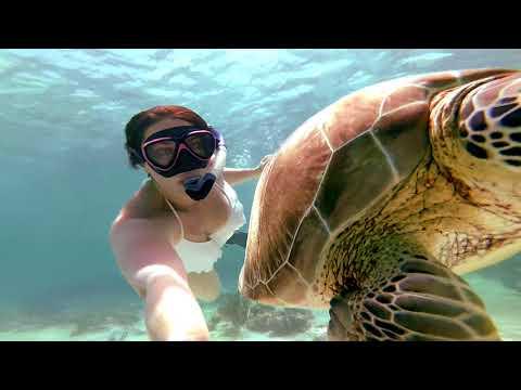 Mexico Snorkeling Akumal Beach GoPro  2017