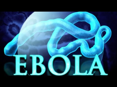Ebola virus- What is the Ebola virus, and how worried should we be