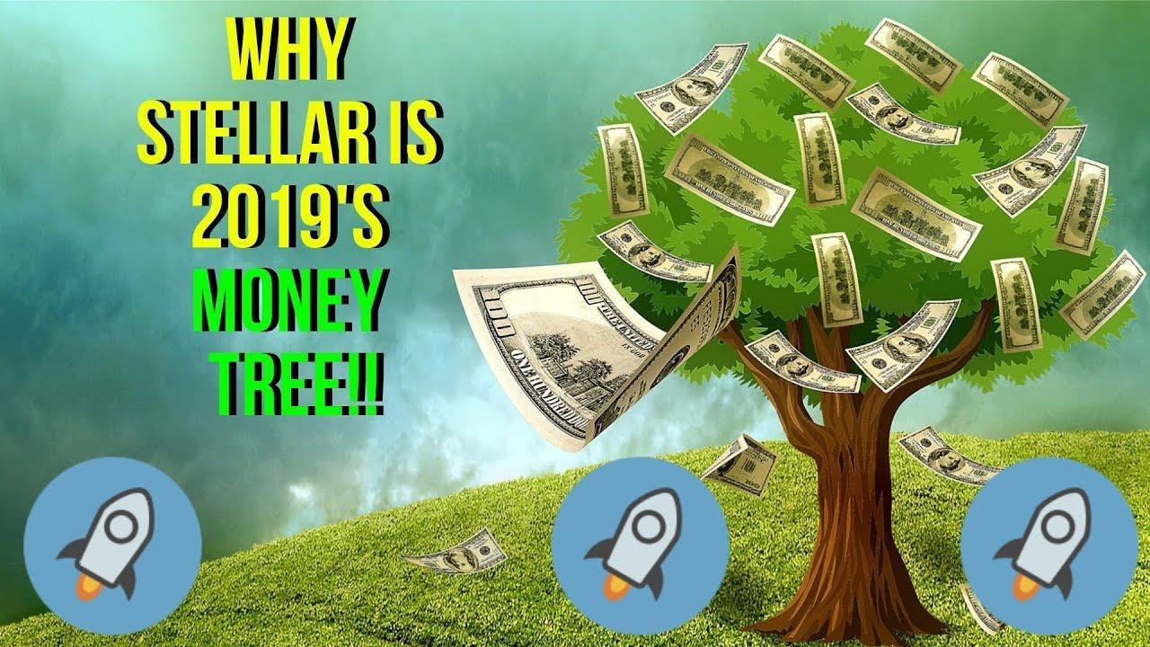 Stellar Lumens: 2019's Money Tree? #XLM #Giveaway #StellarLumens