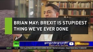 Brian May: Brexit is stupidest thing we've ever done