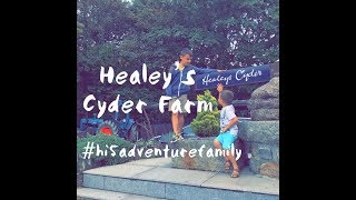 Healey's Cyder Farm... The best cream tea... Rattler... England with k
