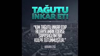 Ebu Hanzala - Akp Gelmesinde Chp mi Gelsin Diyenlere Cevap !!!