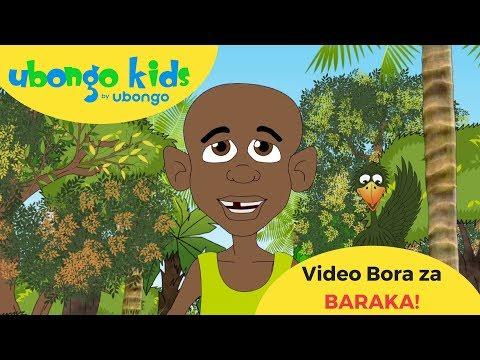 Baraka Baraka! | Video Bora za Ubongo Kids | Katuni za Kiswahili