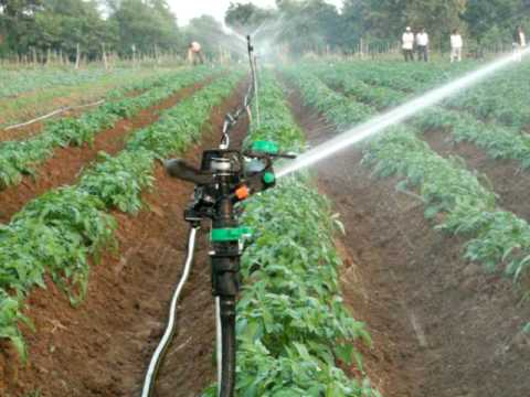 a spriklers system I instaled in India for Jain irrigation co.