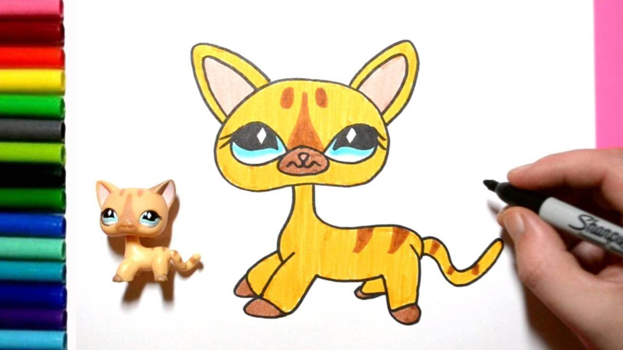 How To Draw Lps Short Hair Cat 886 Little Pet Shop Toy Drawing Youtube