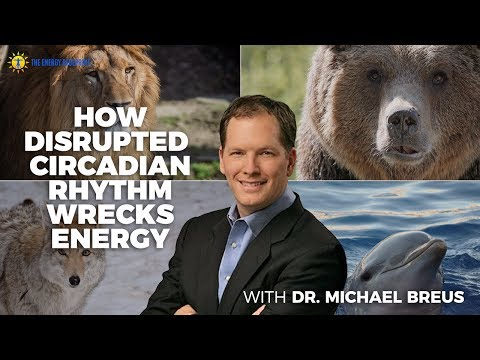 Lions, Wolves, and Bears, Oh My. How Disrupted Circadian Rhythm Wrecks Energy with Dr Michael Breus