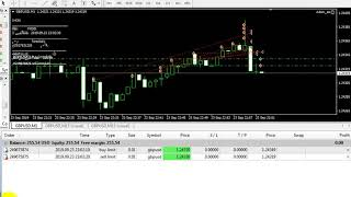 Adam_ea _ live trading good ea_ part 3