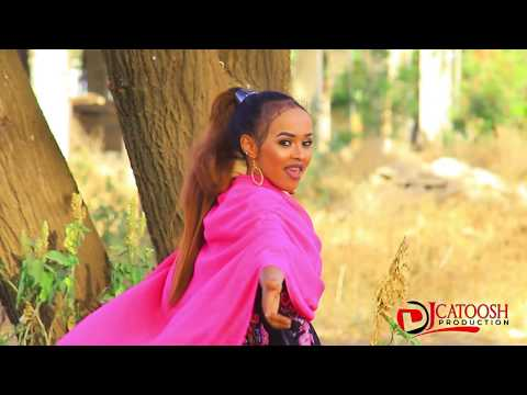 NIMCO DIAMOND DHEESHA 2019 OFFICIAL MUSIC VIDEO DIRECTED BY DJ CATOOSH Logo