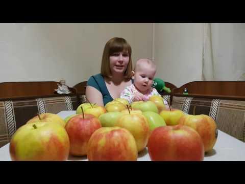 Яблочная аджика