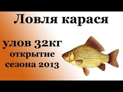 летняя рыбалка на карася - 2013-06-12 22:21:09