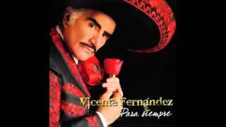 Vicente Fernandez   Million de Primaveras