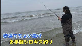 砂浜でちょい投げお手軽シロギス釣り