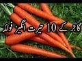 Gajar ke Fayde | Health Benefits of Carrot in Urdu / Hindi