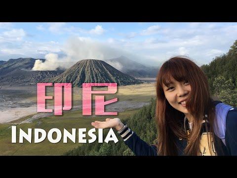Travel vlog | Indonesia 印尼14天大旅行 Bali, Komodo, Jogyakarta  | Yakila九層塔