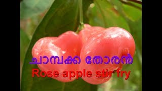 chambakka thoran ചാമ്പക്ക തോരൻ Rose apple stir fry