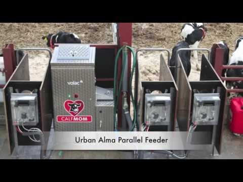 Urban Parallel Calf Feeder