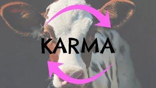 PODCAST 12 | Is Eating Animals Bad Karma? [Sample]